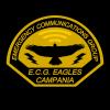 RNRE ECG EAGLES